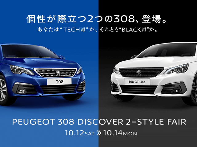 308-discover-2-style