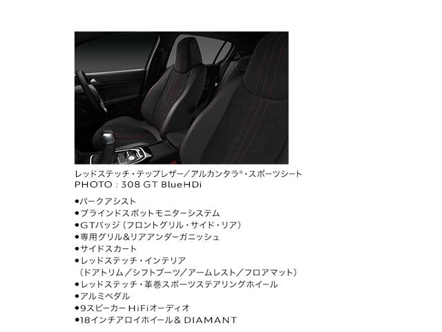 308-GT-SW-BlueHDi_1709